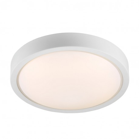 IP S9 Ceiling Light