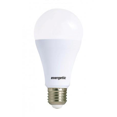 LED Bulb Frost 14W 1521L E27