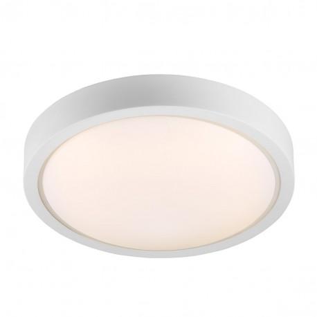 IP S9 Ceiling Light