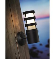 Darwin Wall Light
